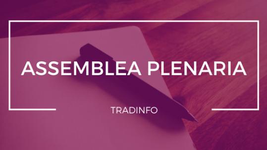 assemblea-plenaria_tradinfo